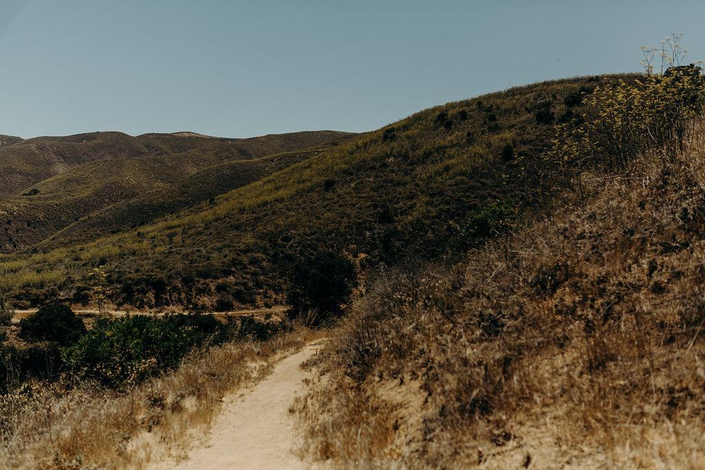 California-1110.jpg