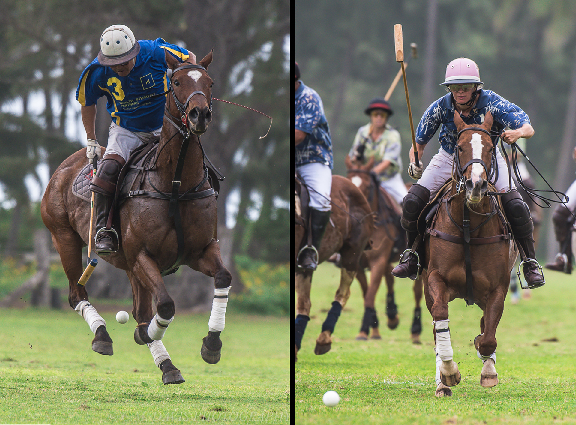Action Photos Collage - TWO PHOTOS - 04-15-2018_lr1920.jpg