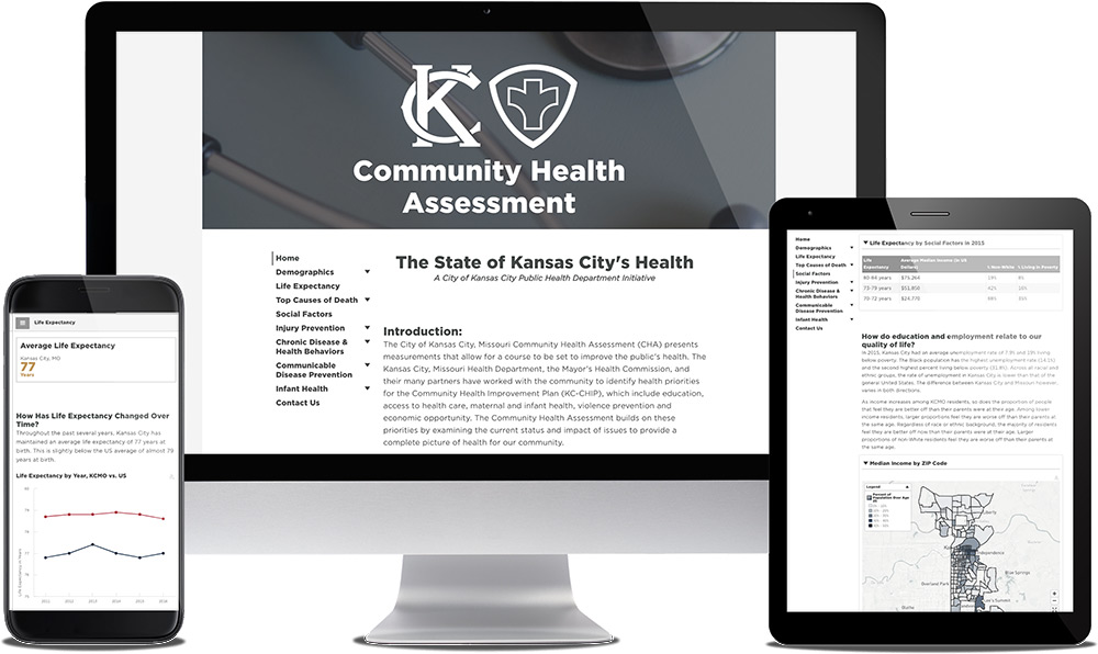 See Sample Community Health Assessment Dashboard