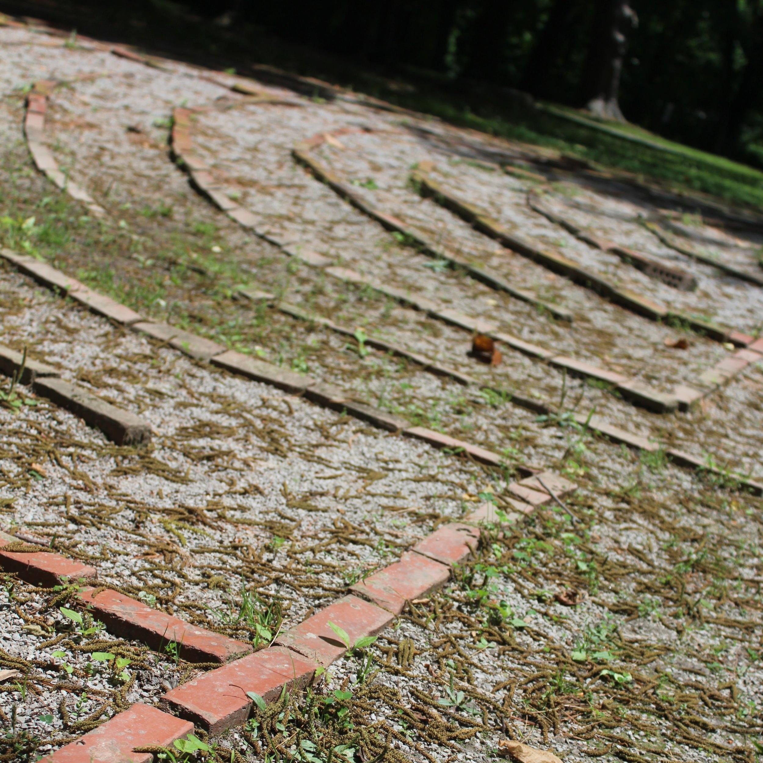 Labyrinth Photo-LW.jpg