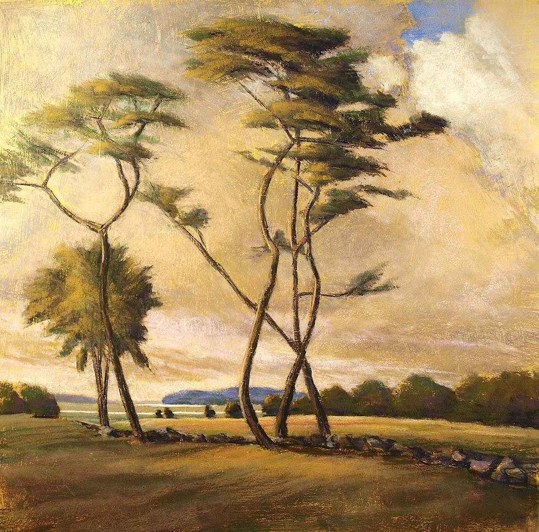 Marshlands -