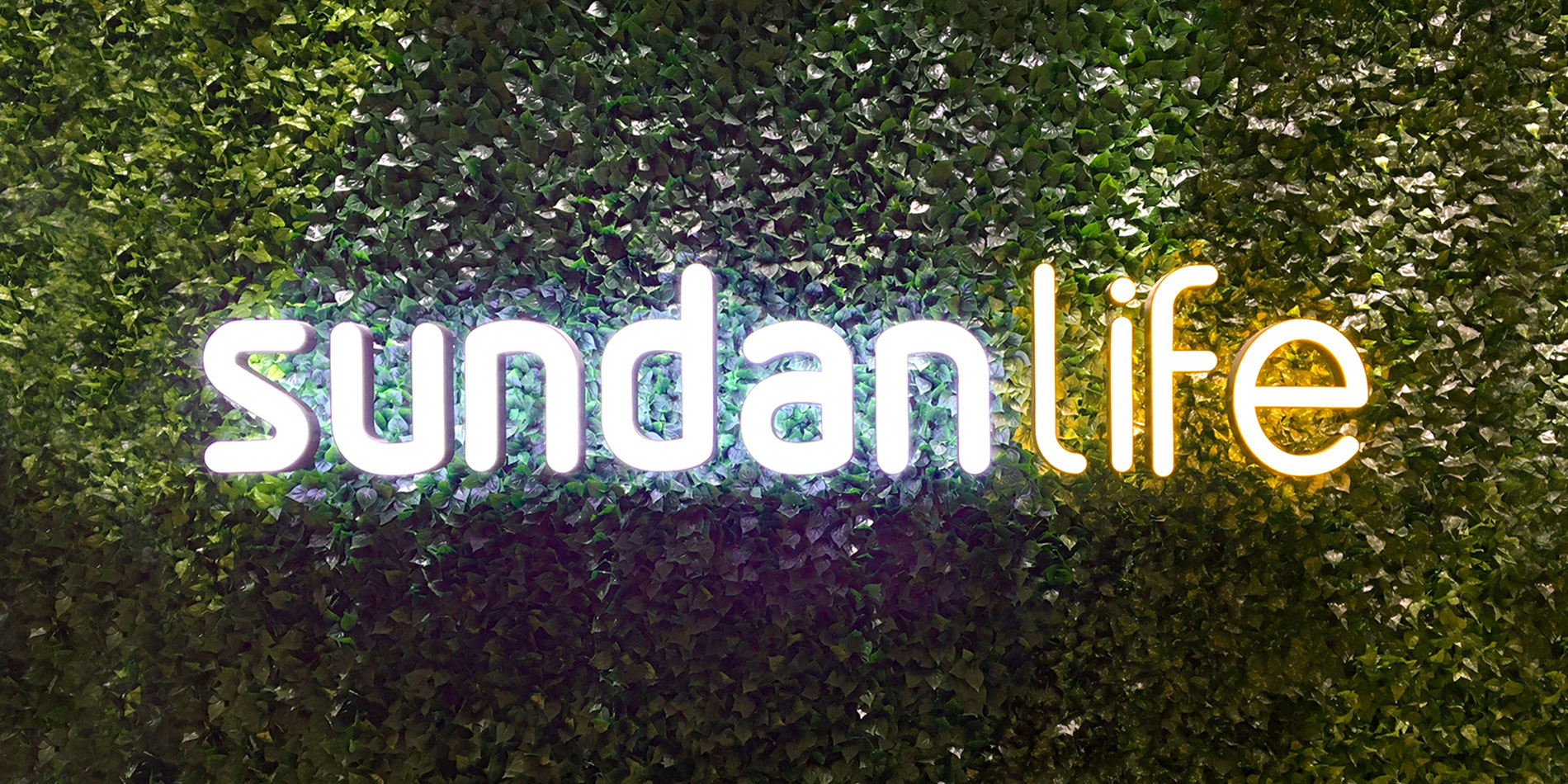 Sundan_life_018.jpg
