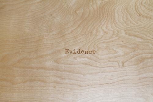 72+DPI_2_Angela+Strassheim_Evidence+Box.jpg