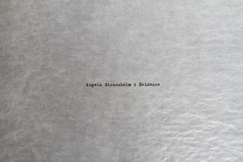 72+DPI_4_Angela+Strassheim_Evidence+Box.jpg