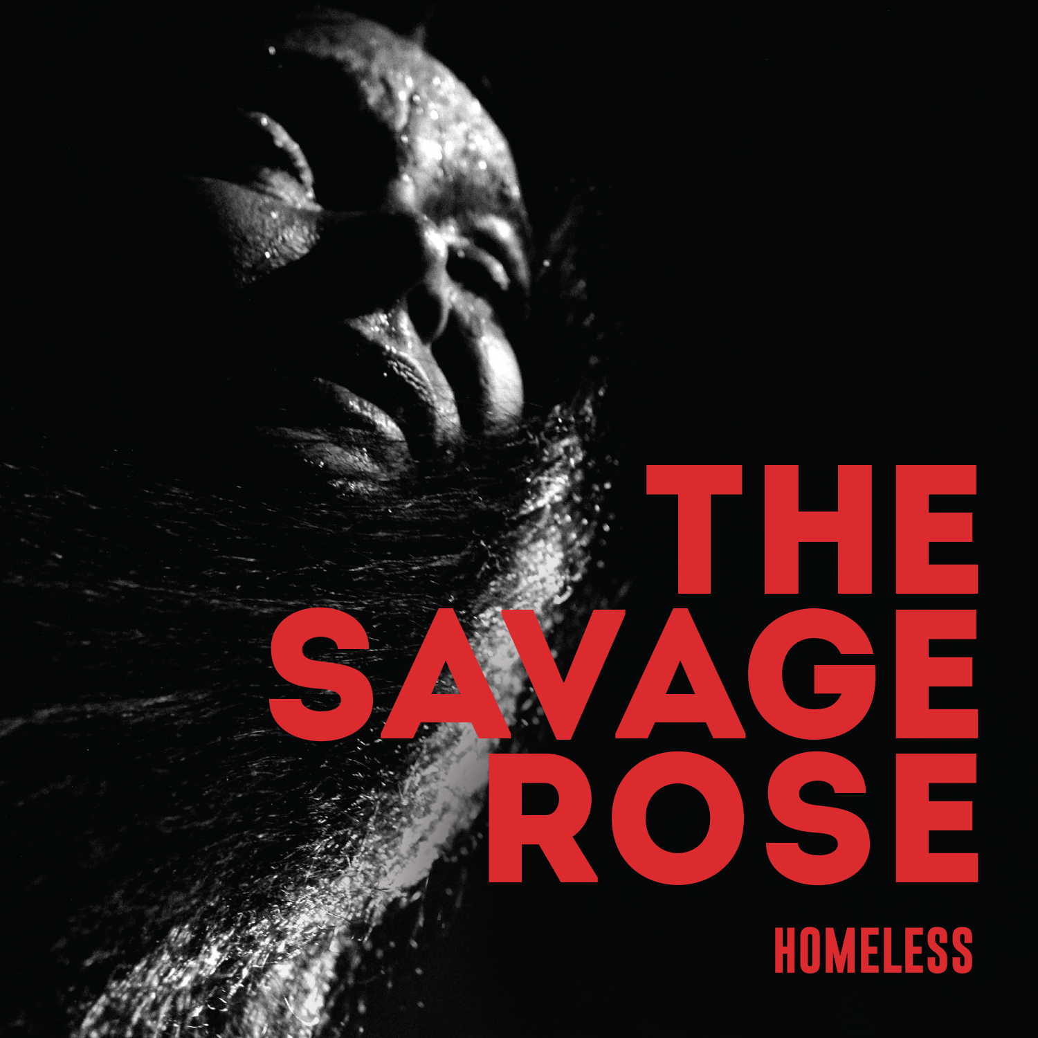 TheSavageRose_Homeless_Cover_Square.jpg