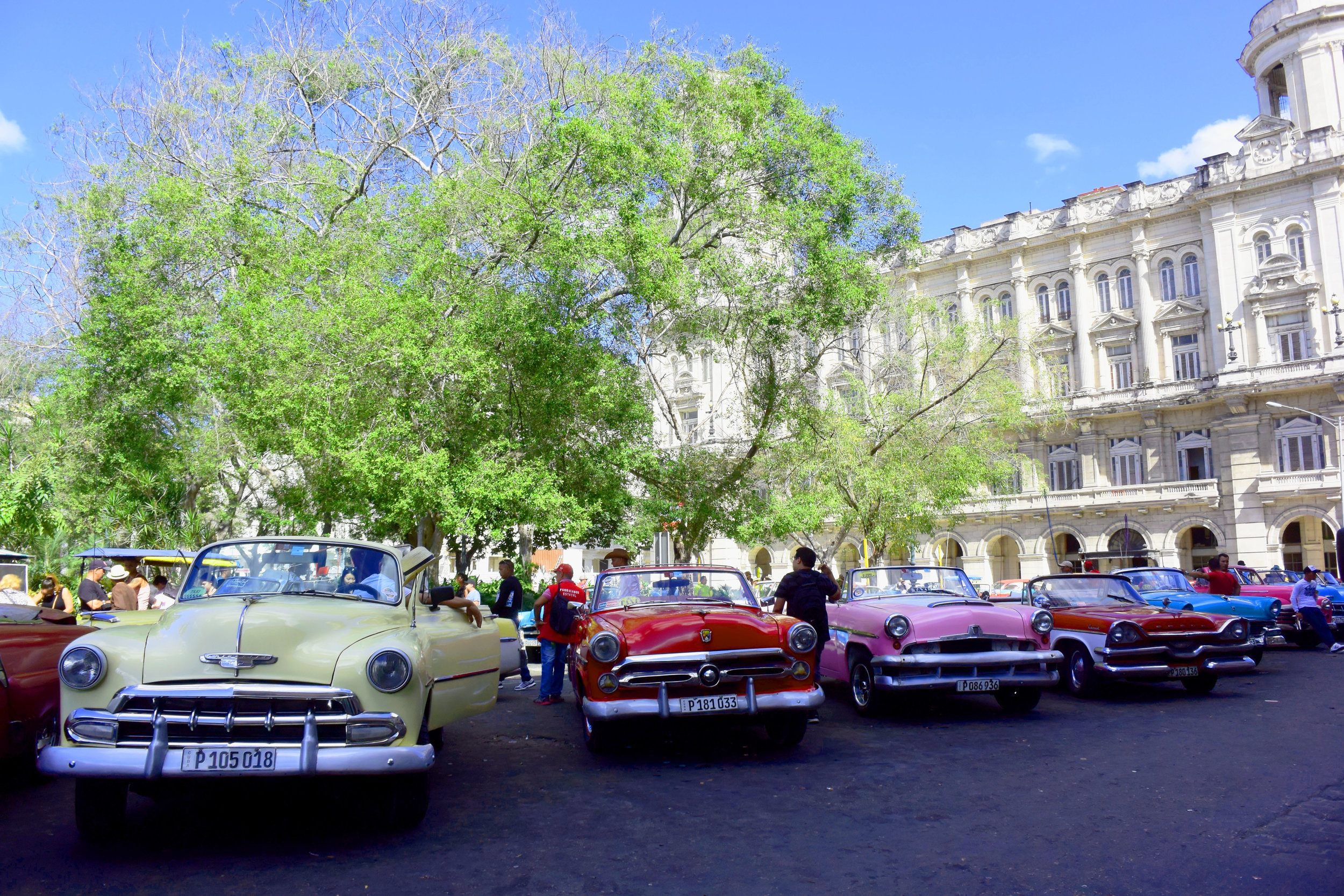 Photo Credit:  Anna Bryant   the old cars of course