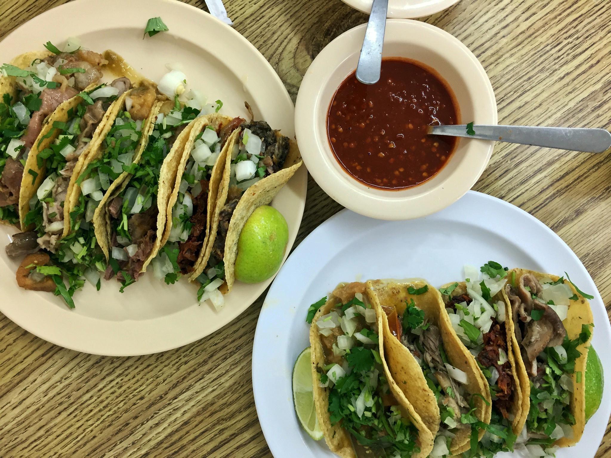 Photo Credit:  Anna Bryant   118 S Carroll Ave, Dallas, TX 75226
