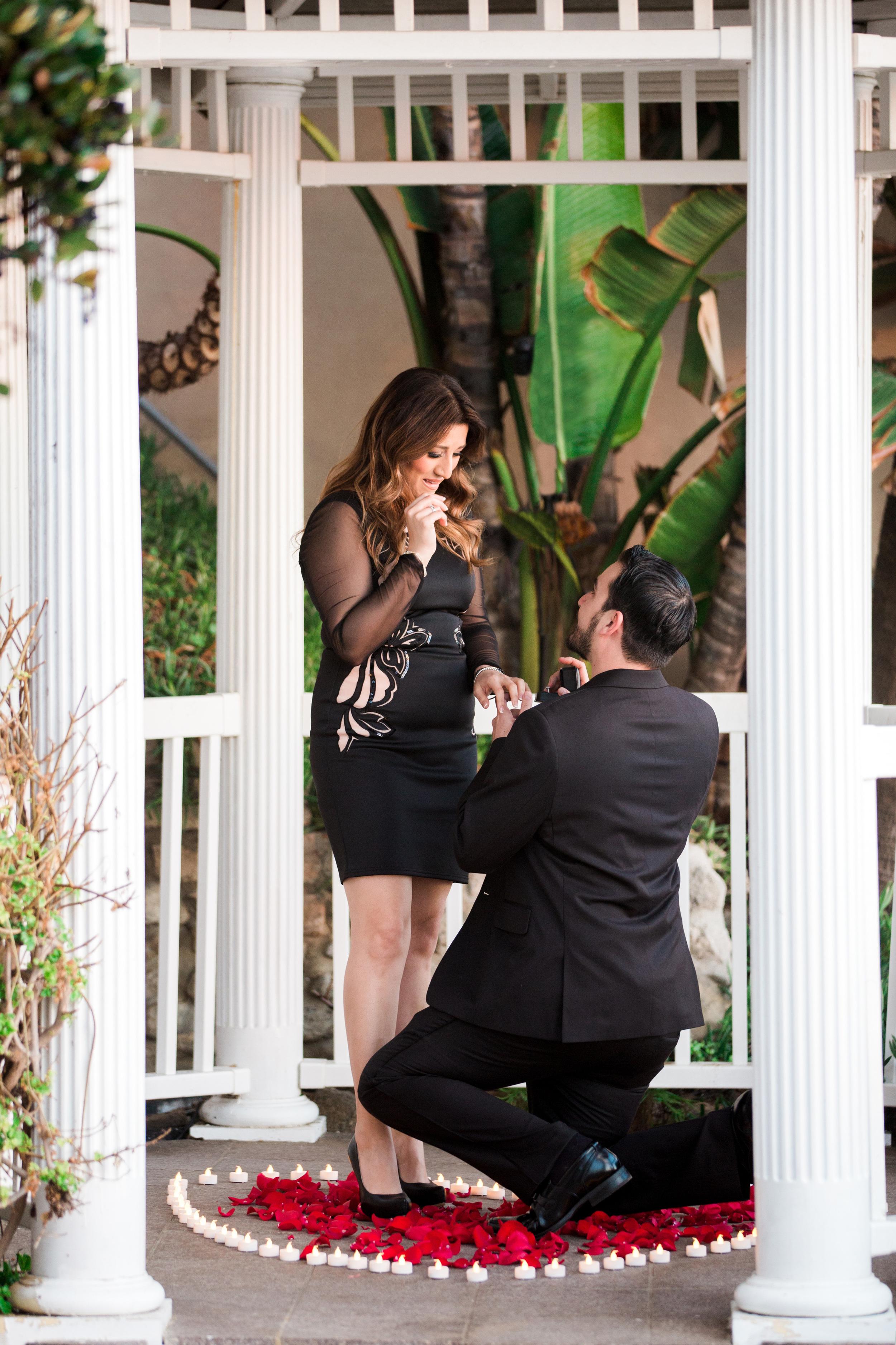 Matt and Mona's Proposal-21.jpg