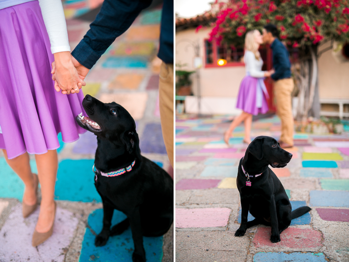 San Diego Wedding Photographer Engagement Balboa Park Tangled Inspired 4-4.jpg