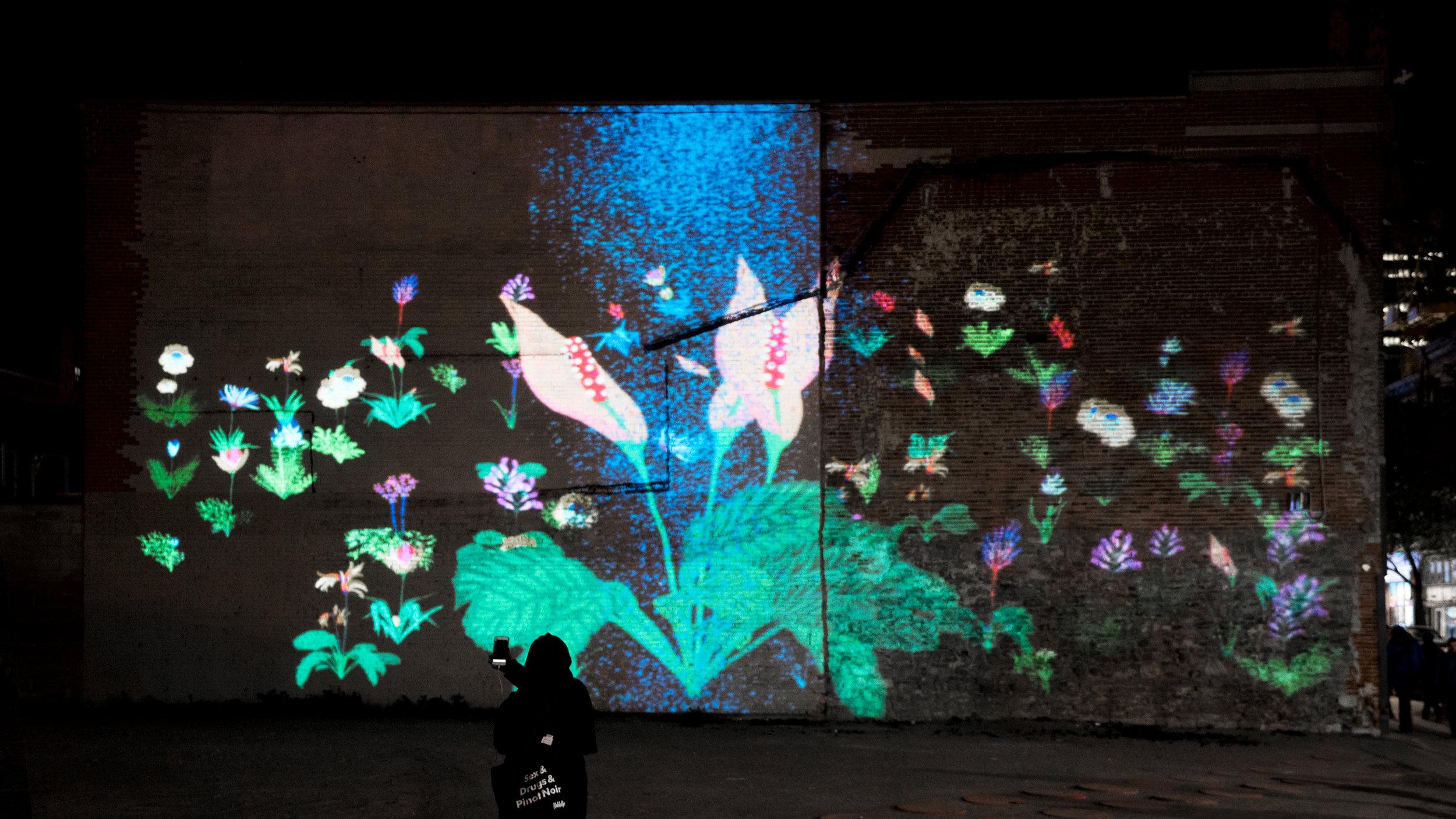 Grafika jardin de nuit.jpg