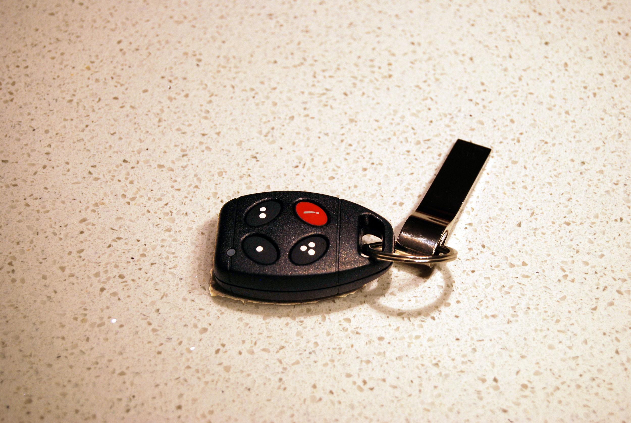 Garage Remote 02.JPG