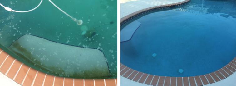 Yellow Algae in my pool