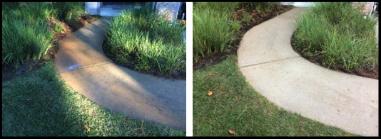 Sidewalk Cleaning & Rust Stain Removal
