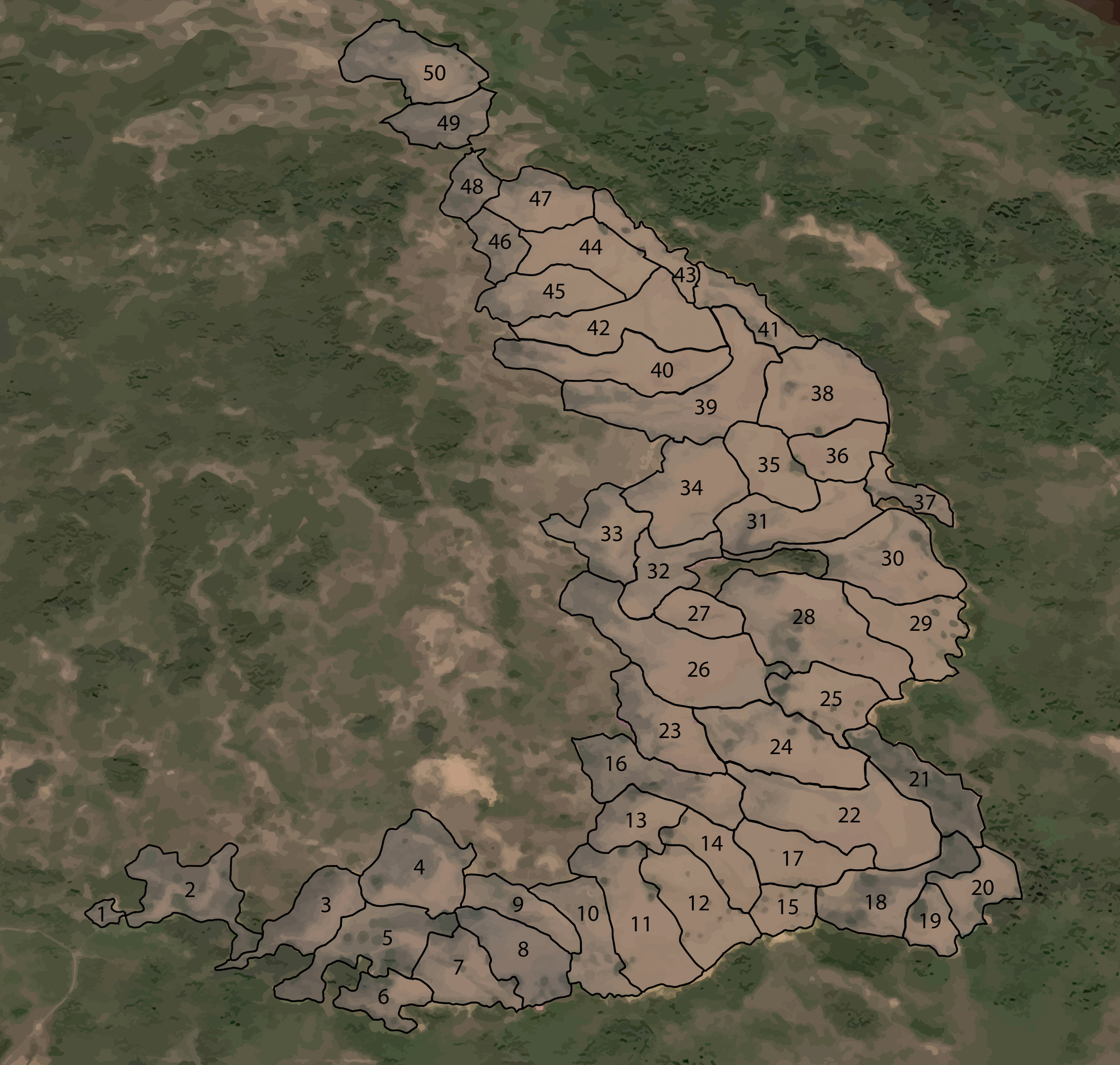 Fig 3.  Google Earth image showing the boundaries of the 50 swales for which population estimates were conducted.
