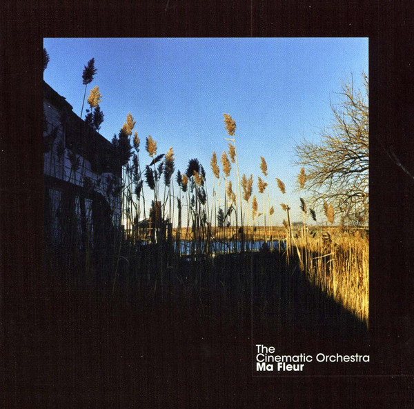 The Cinematic Orchestra - Ma Fleur