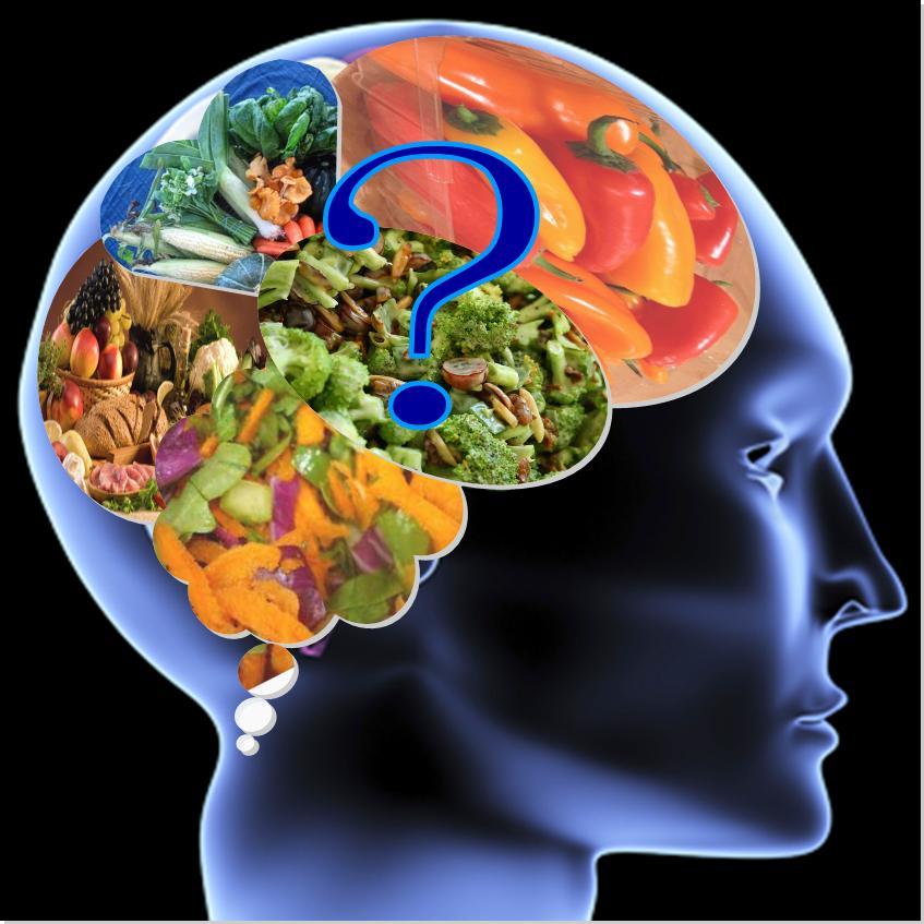 food-brain-queston.jpg