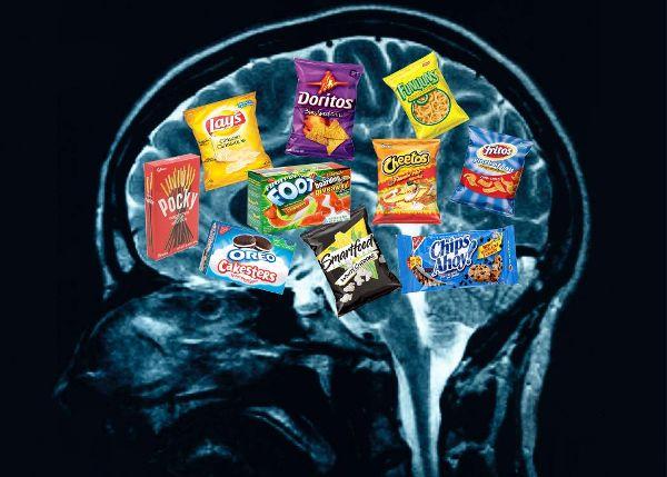 Your-brain-on-food.jpg