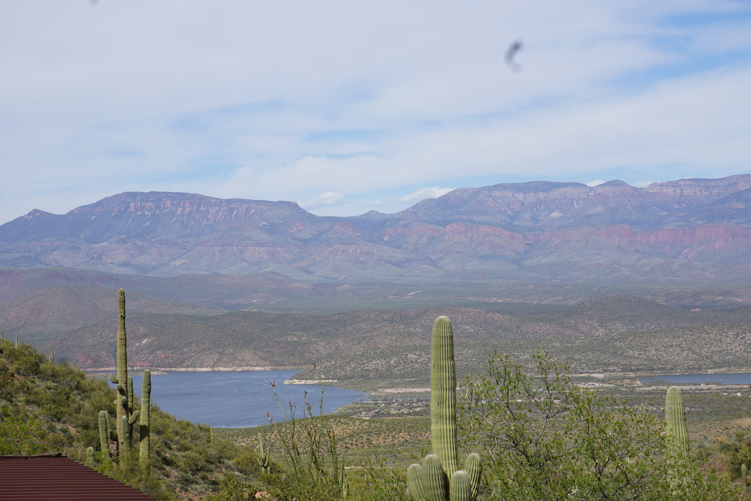 Roosevelt Lake from the Tonto Visitor Center