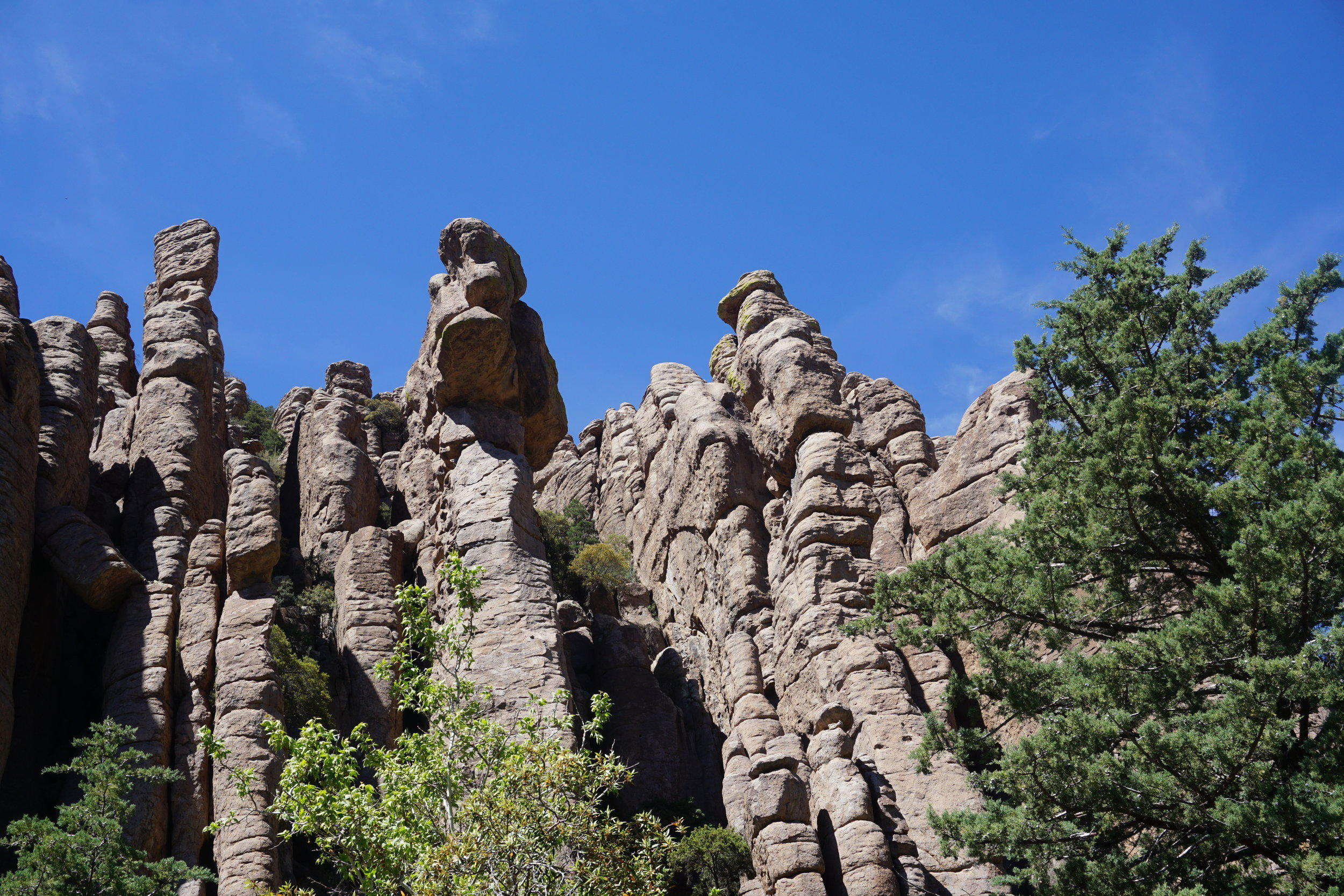 The first hoodoos you come upon.