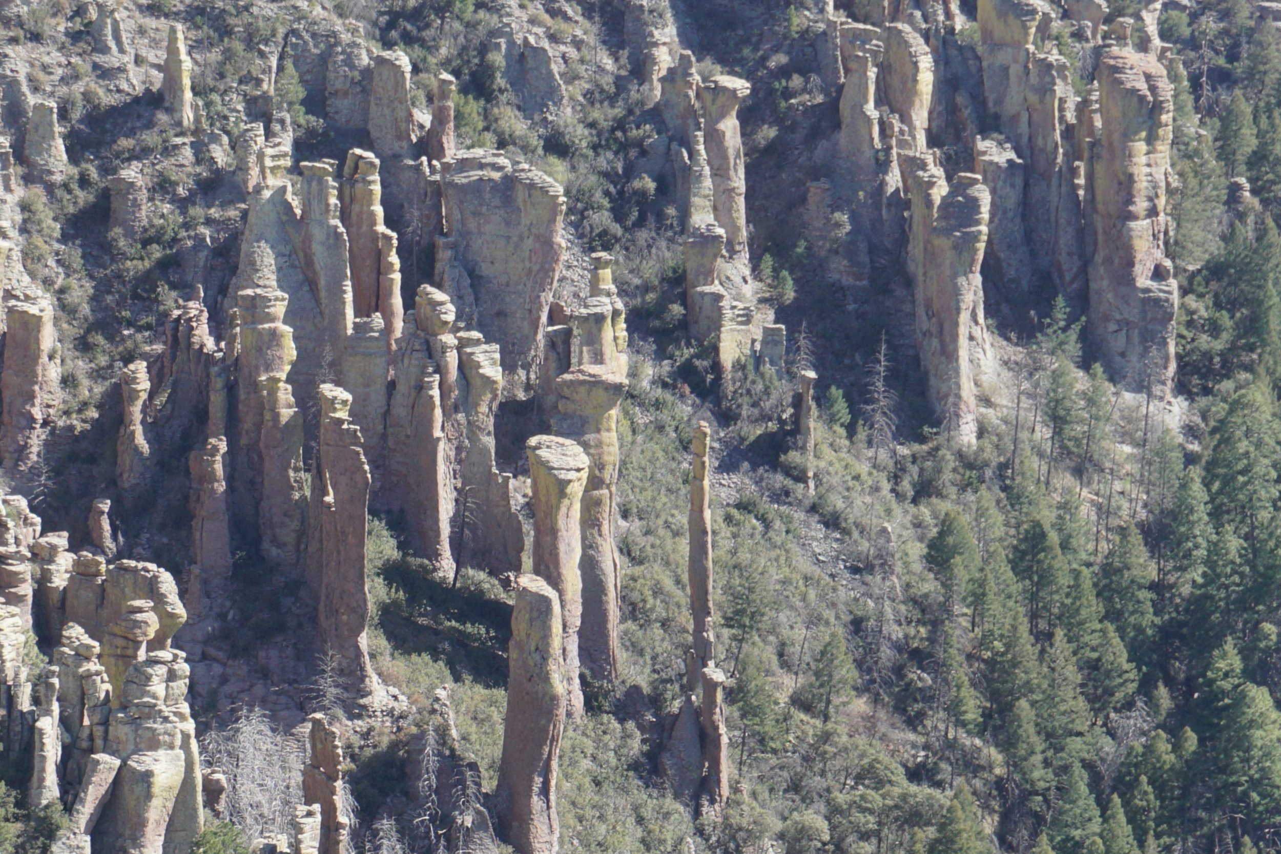 """The tall thin hoodoo is the """"Needle"""".  It's 300' tall and less than 6' in diameter.  Some places it's only 3' in diameter"""