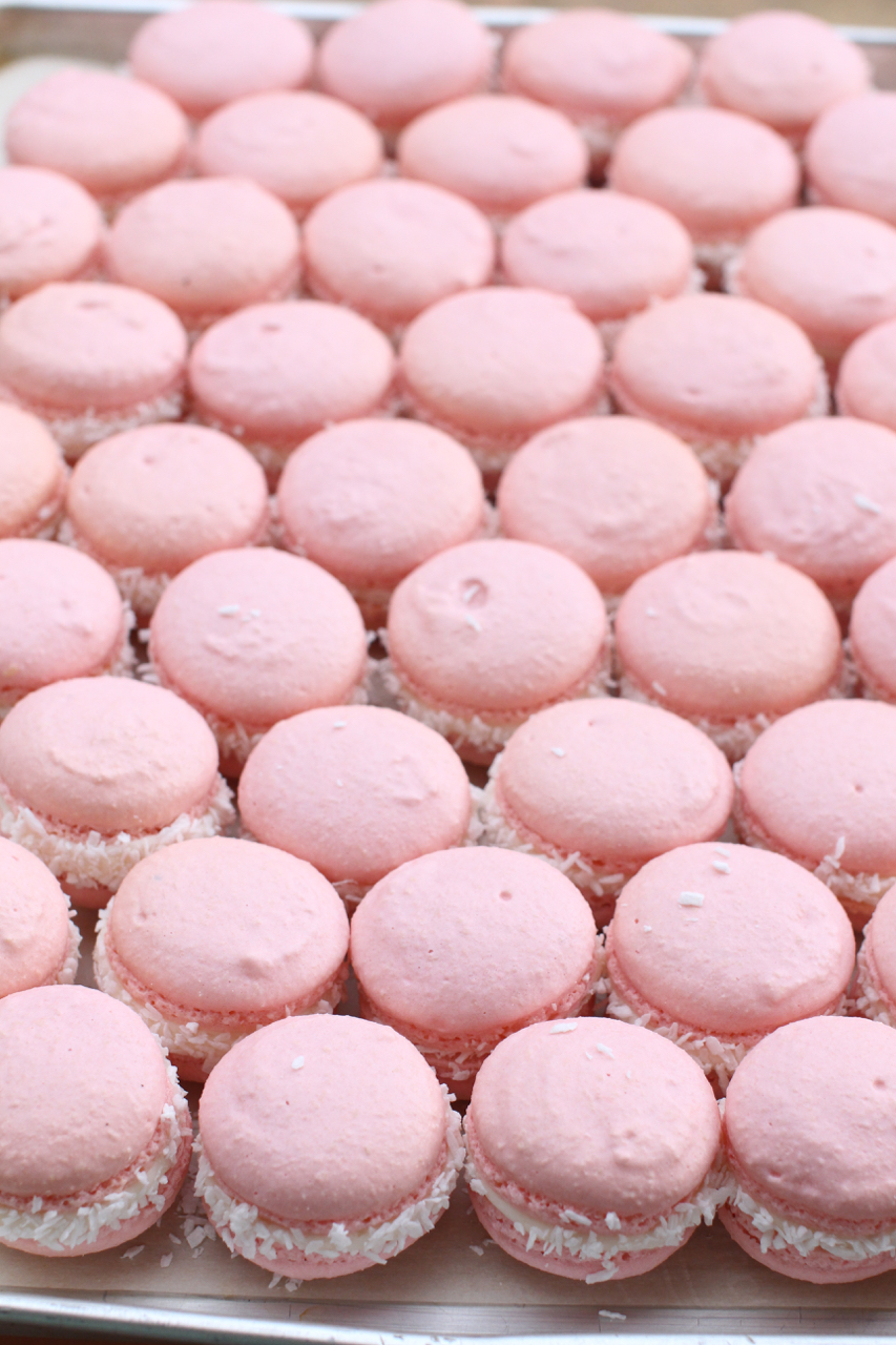 cupcakesbabysh56.jpg