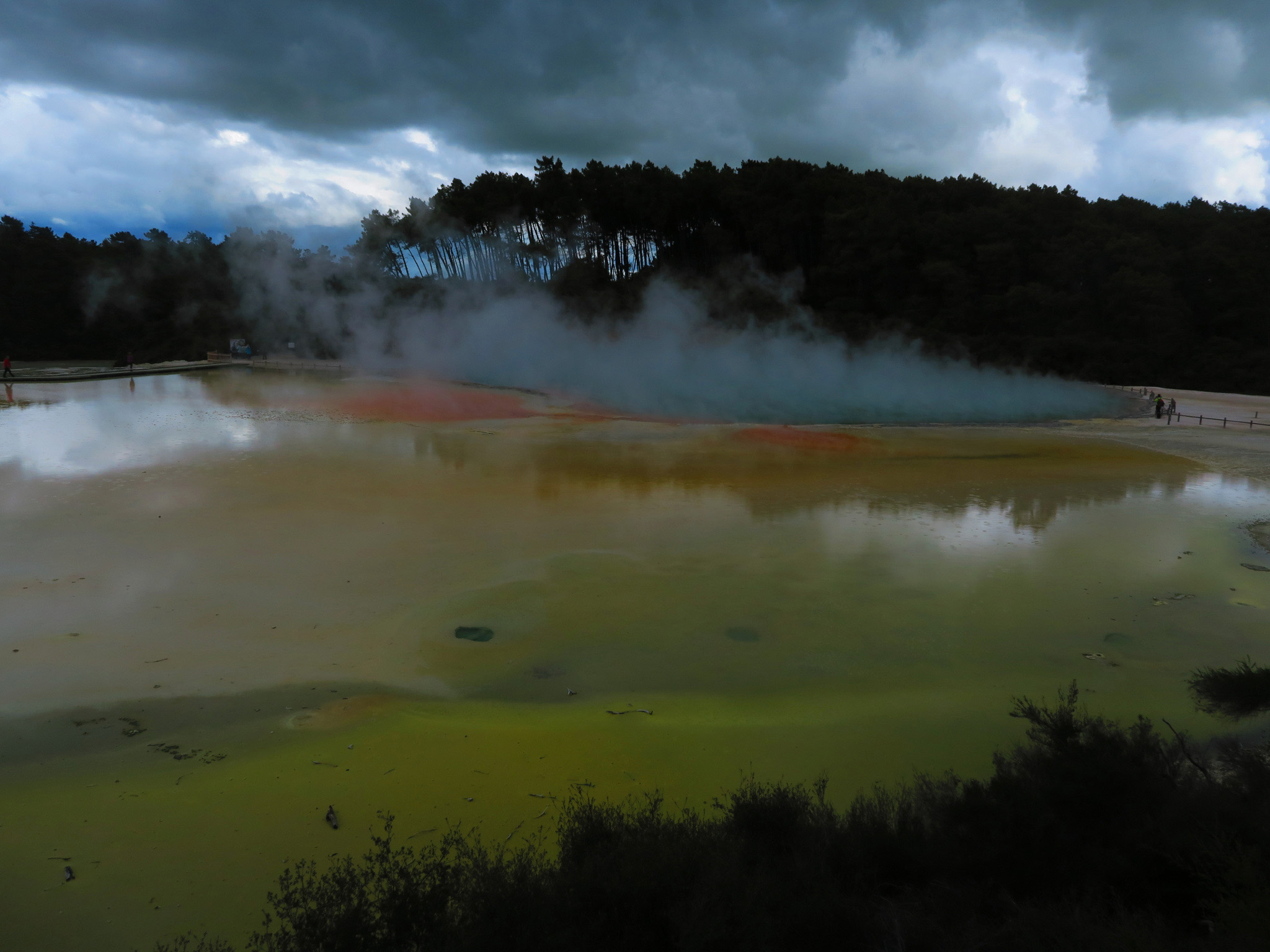 Rotorua Thermal, New Zealand, 2016