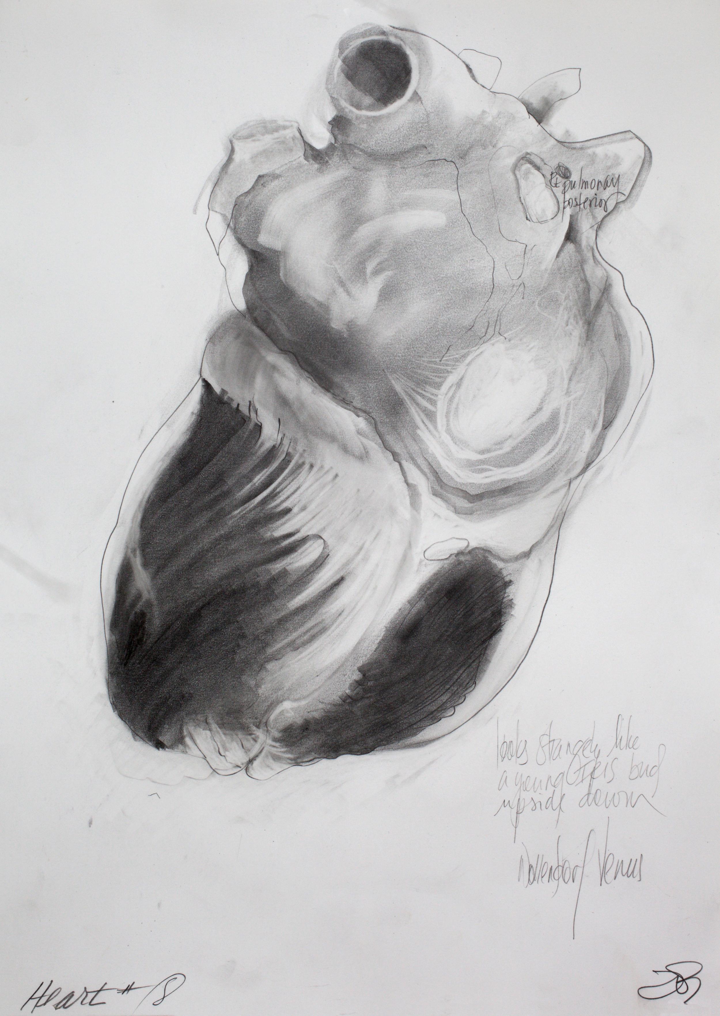heart 8.jpg
