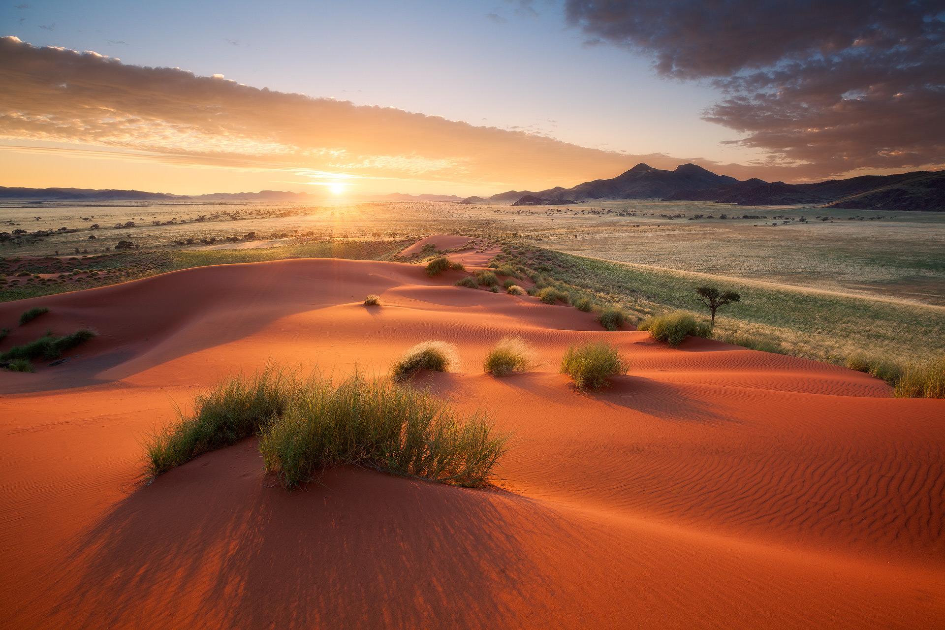 Namib-Rand-7-3.jpg