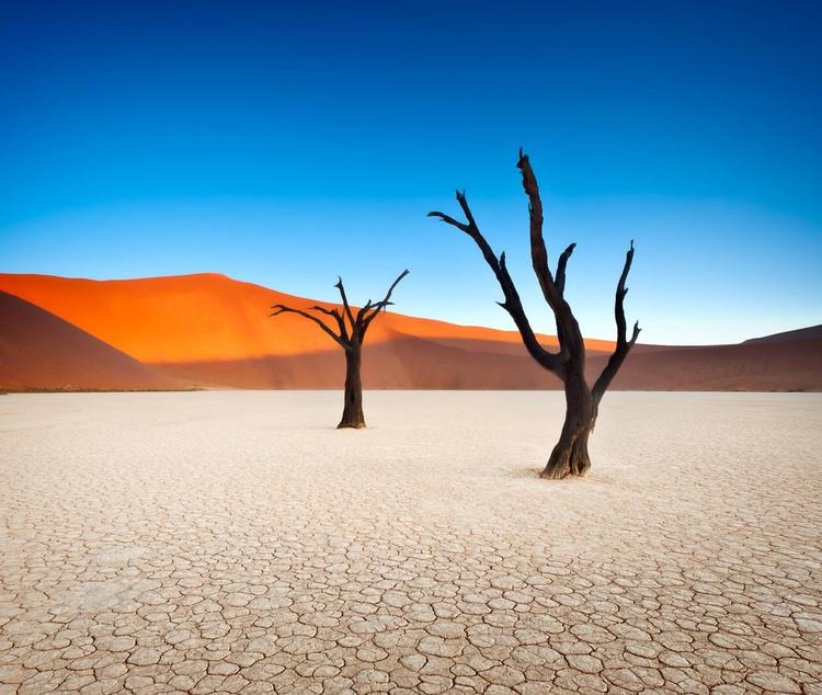 deadvlei-namibia-woe1-2.jpg