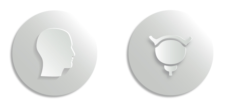 Human head and bladder  icons for a healthcare/pharmaceutical client