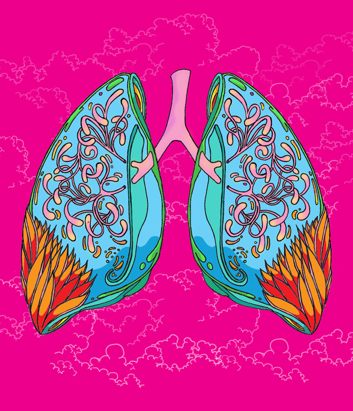 Lung illustration for healthcare client