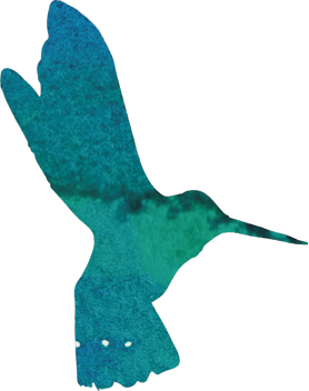 icon_hummingbird_lowres_flipped.png