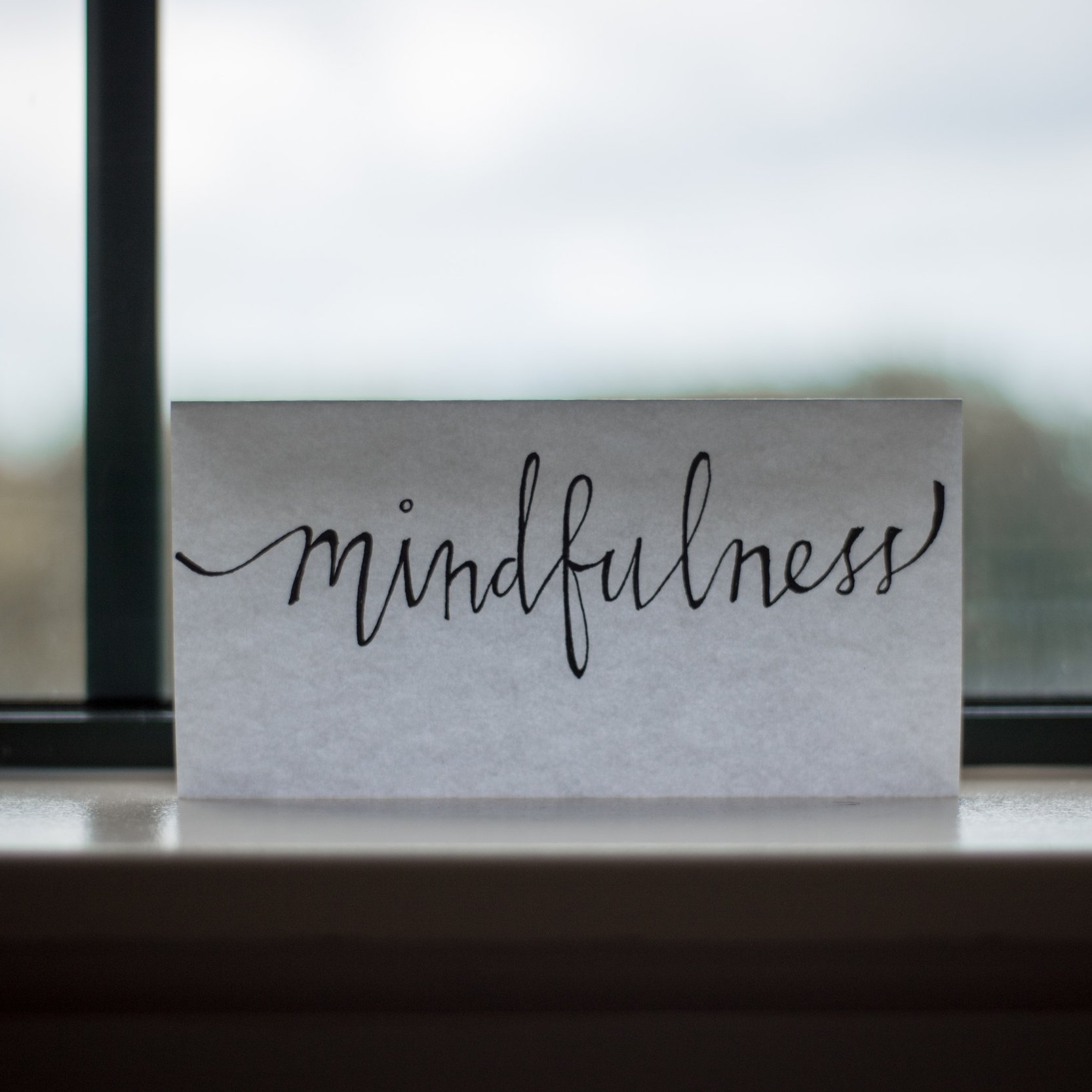 Nourishing Aliveness® Natural Weight Women's Workshop - October 5, 2019Saturday from 11:30 am - 2:30 pmChestnut Hill, PAJoin us for a taste of mindfulness with ancient practices that are supported by current research in neuroscience, psychology, and mindfulness.Use the Mindful Process of KAR-ing® to tune into your needs and wants and to discern what is true about diets, weight, and health.