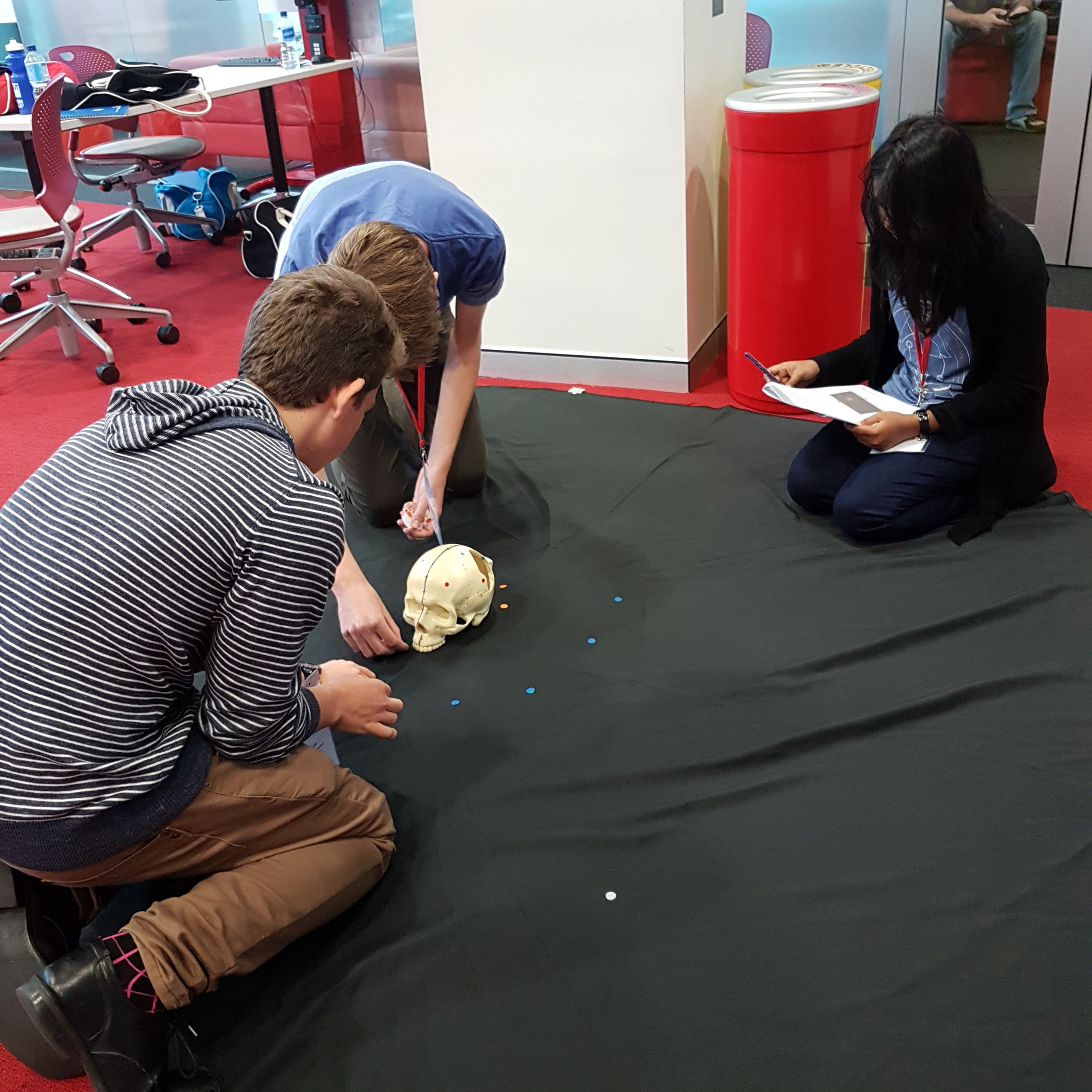 Day 2. Students setting up their skull model to scan.