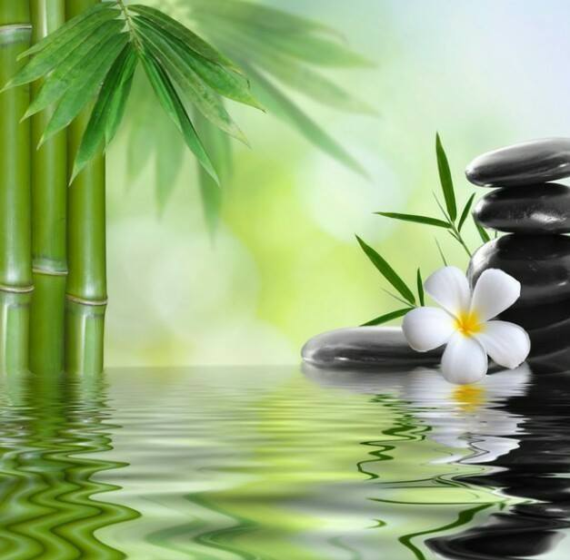visit natural detox spa and beauty centre