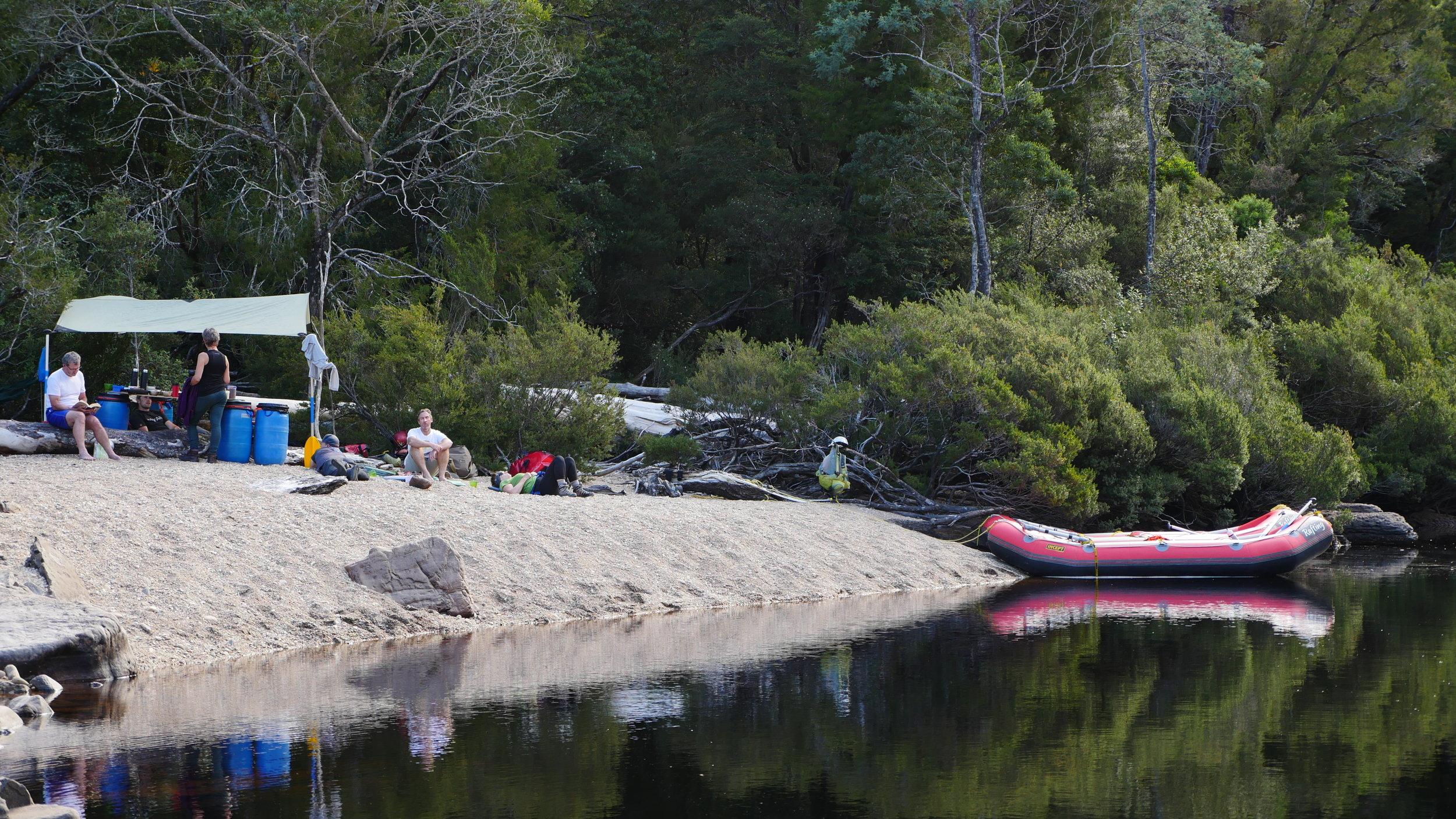 Franklin River rafting, stunning morning at Balck Forest Camp.JPG