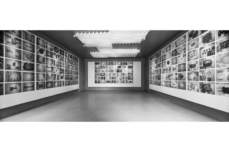 TPL Les Nuits Photographics Exhibition(BW)1500px.jpg