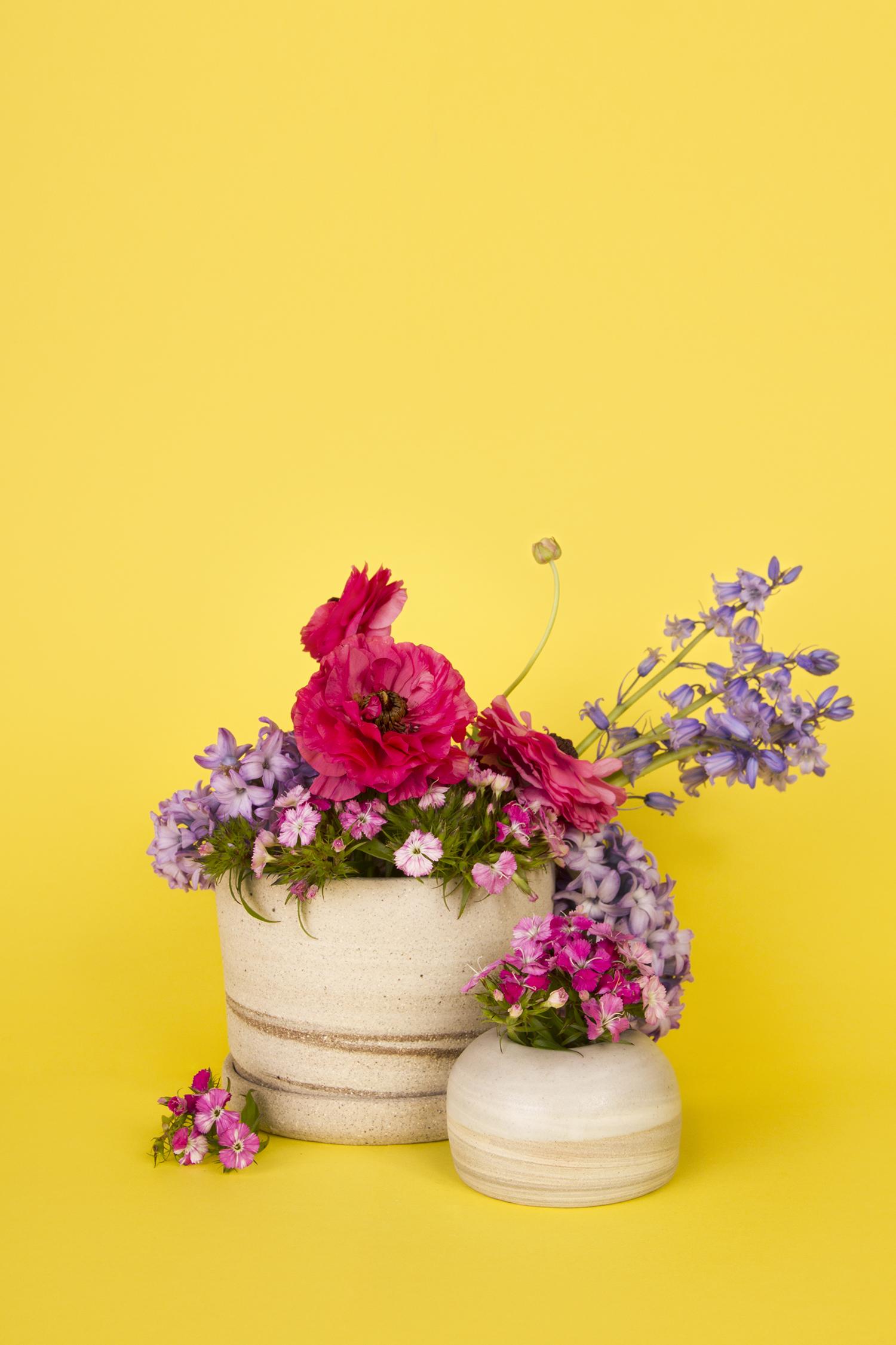 Tirant-Floral-Shoot-2016-000.jpg