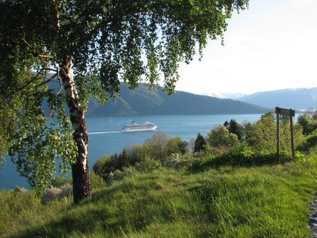 cruisefart-pa-fjorden_1.jpg