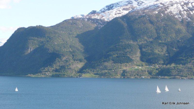 seilas_sognefjorden.jpg