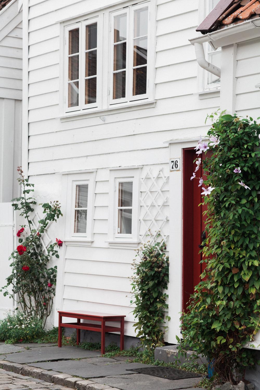Hilo&Ginger_NorwegianWedding-47.jpg