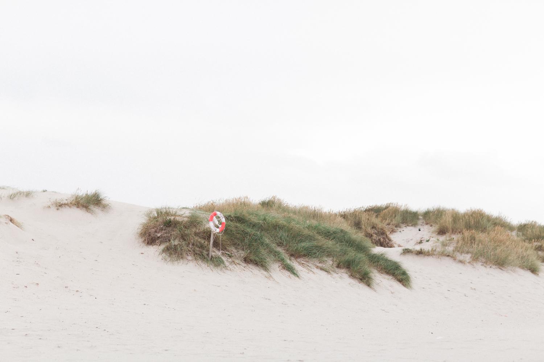 Hilo&Ginger_NorwegianWedding-86.jpg