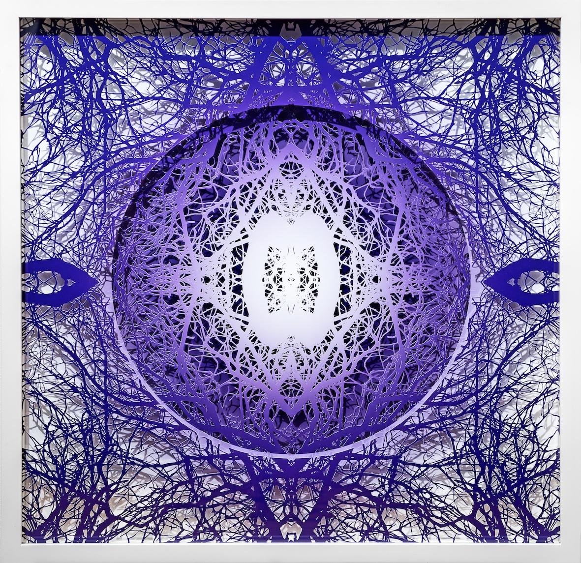 Radial (Purple)