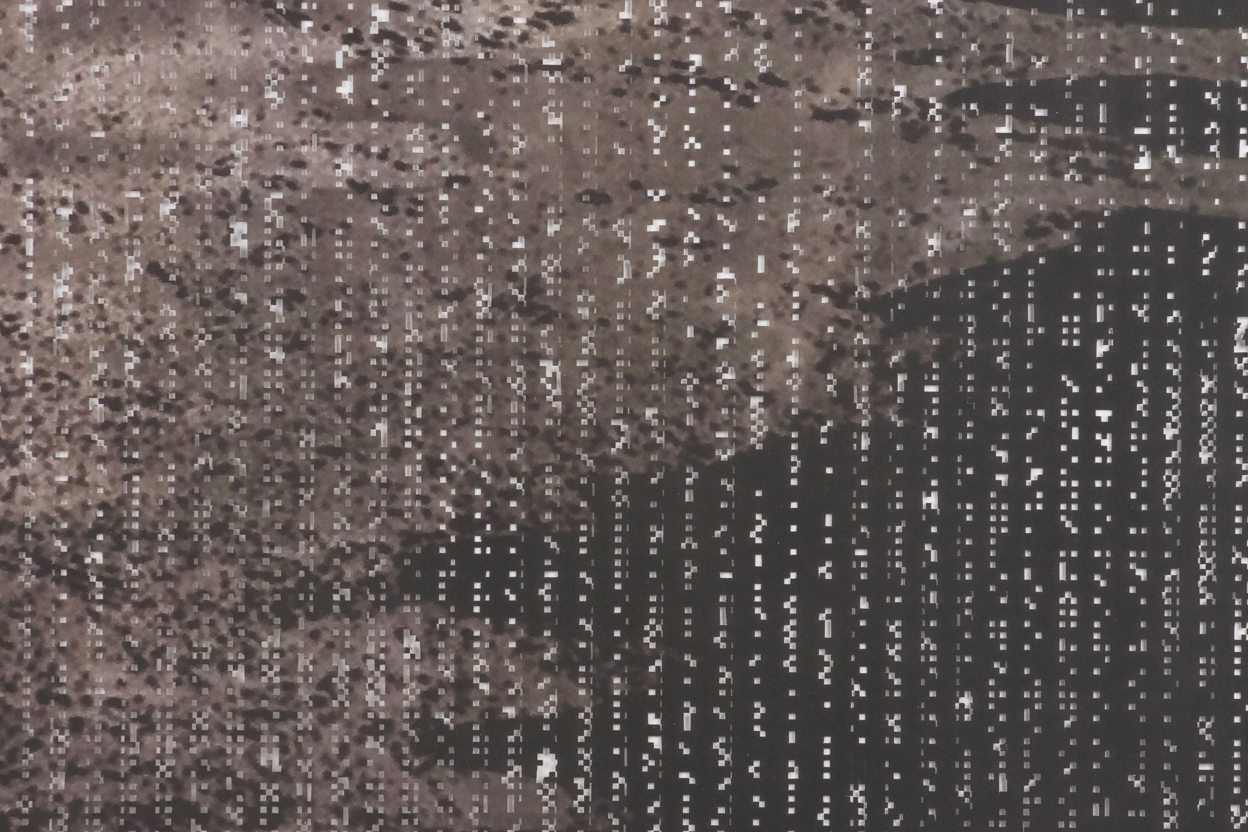F-Pattern (detail)