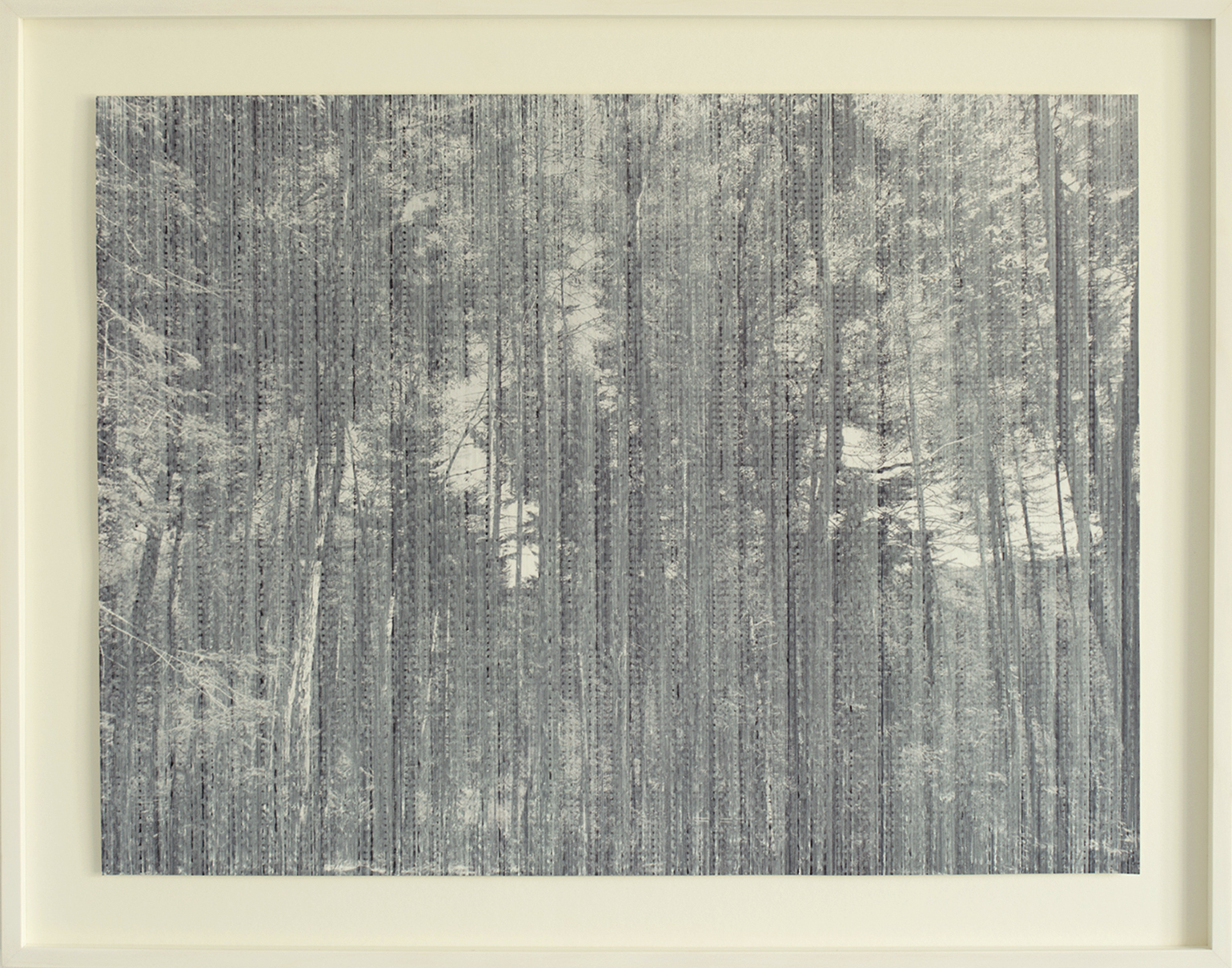 Apparition (Forest I)