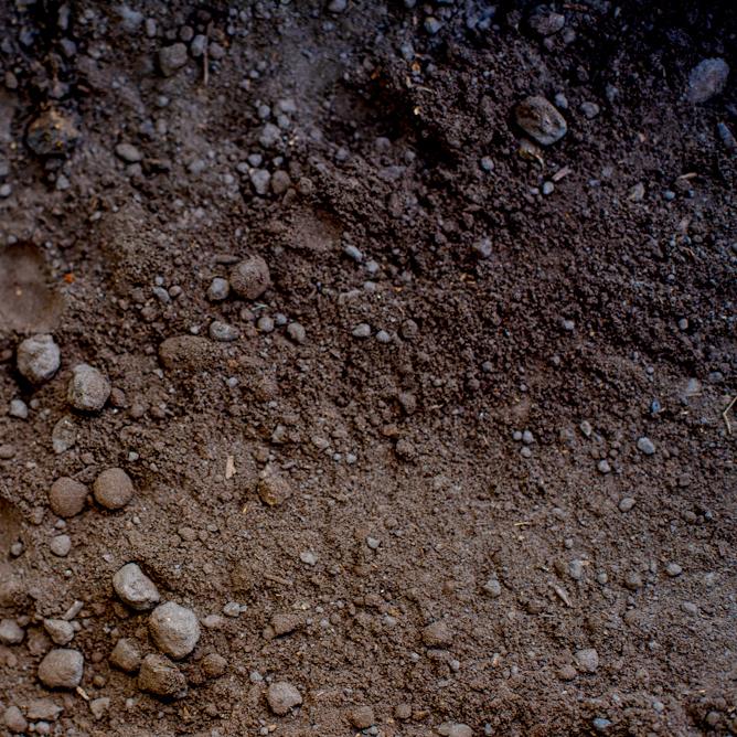 $192 -  FULL LOADS OF SOIL - 12 CUYD