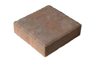 holland_aut-brown-square.jpg