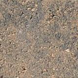Sierra Grey