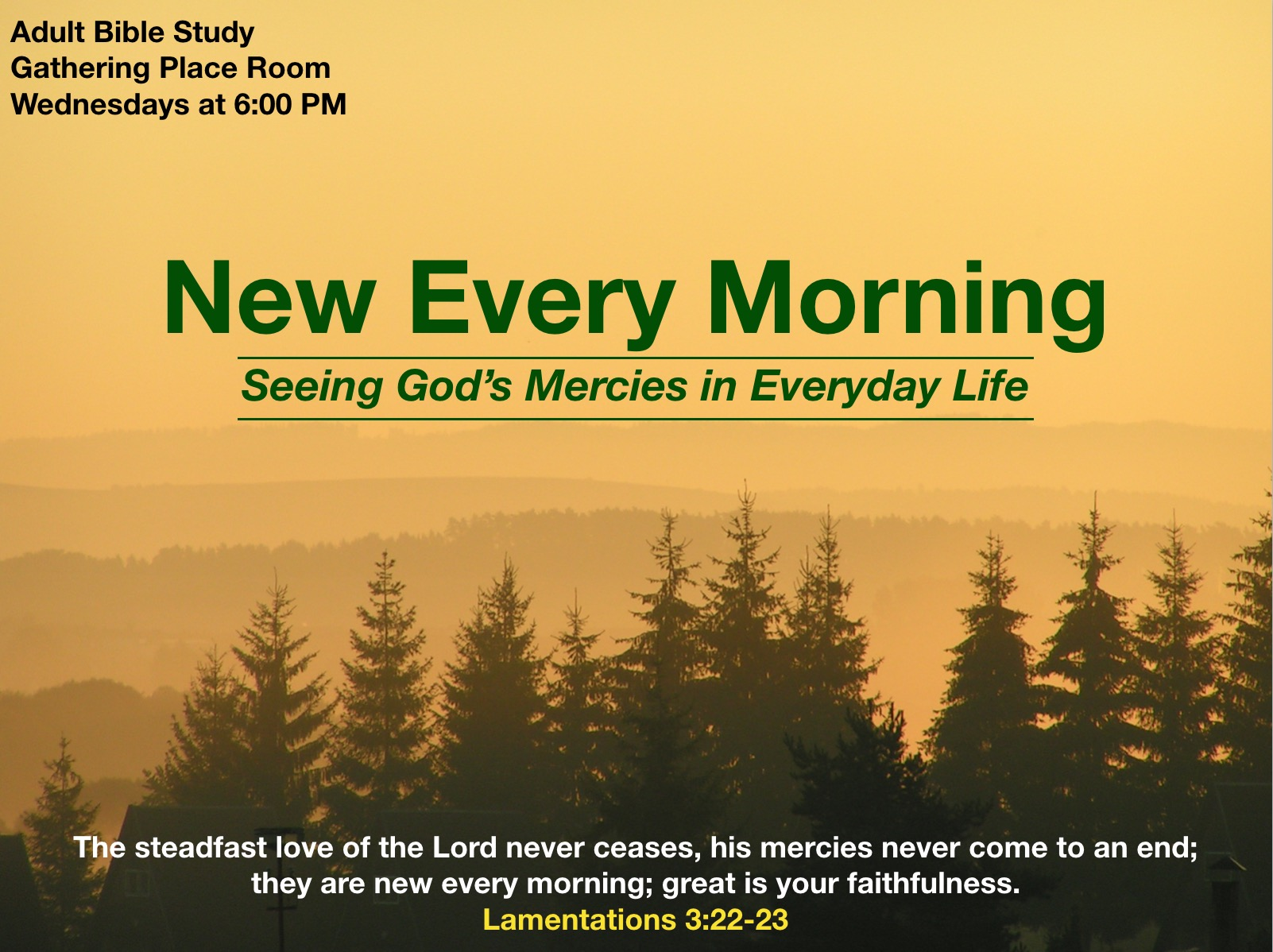 New Every Morning - Adult Bible Study Fall 2019.jpeg