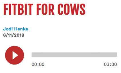 SF_fitbit_for_cows.png